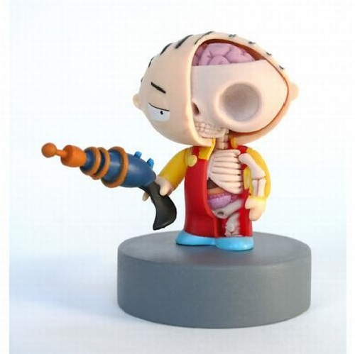 Stewie Family Guy Anatomical Sculpt Jason Freeny